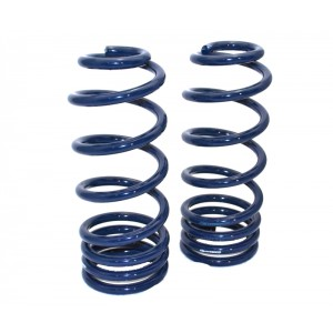 1958-1964 B-Body StreetGRIP Lowering Coil Springs - Rear - Dual Rate - Pair